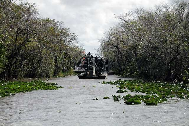 How to Book Airboat Everglades Adventure Tour in Orlando Florida
