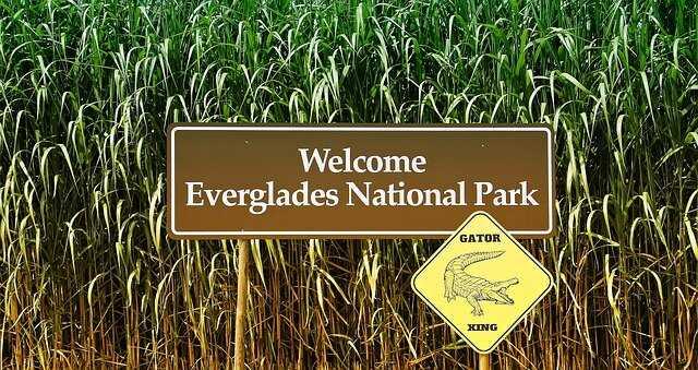 Everglades National Park Florida - Airboat Everglades Adventure Tour in Orlando